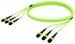 Претерминированный кабель LazrSPEED® WideBand OM5 3xMPO12(f)/3xMPO12(f), изоляция: LSZH, EuroClass B2ca, t=-10-+60 град., цвет: lime, Длина м.: 5