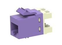 Гнездо SL10G SL110 jack, Cat.6A, раскладка пар: T568A T568B, solid: 22AWG-24AWG, stranded: 24AWG-26AWG, цвет: фиолетовый