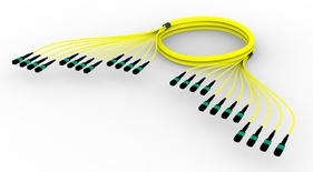 Претерминированный кабель G.652.D and G.657.A1 , OS2 TeraSPEED® 12xMPO12(f)/12xMPO12(m), изоляция: LSZH, EuroClass B2ca, t=-10-+60 град., цвет: жёлтый, Длина м.: 5