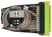 Кассета G2 OM5, LazrSPEED® wideband 6хLC Duplex с держателем сплайсов, с пигтейлами, цвет: lime